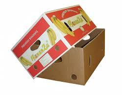 Box Buah Tangerang